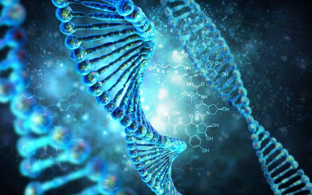Некоторые понятия генетики и их связь с ДНК-генеалогией