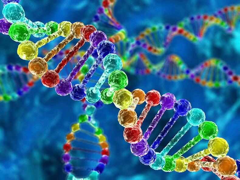 Гены, их определение, медицина и коммерция
