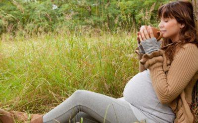 Лекарственные травы и беременность