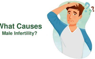 Мужское бесплодие – от правильной диагностики до эффективного лечения