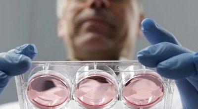 Влияет ли ЭКО на возникновение рака: ответ врача