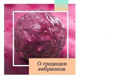 О градации эмбрионов