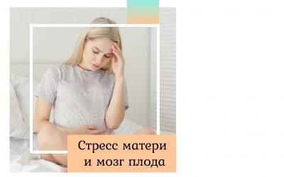 Стресс матери и мозг плода