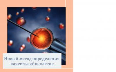 Новый метод определения качества яйцеклеток