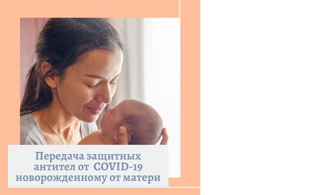 Передача защитных антител от  матери новорожденному