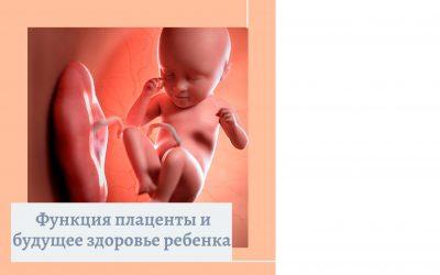 Функция плаценты и будущее здоровье ребенка